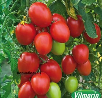 Профессиональные семена огурцов и помидор из Голландии и Франции